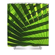 Green Weaver Shower Curtain