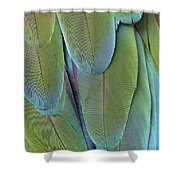 Green-winged Macaw #4 Shower Curtain