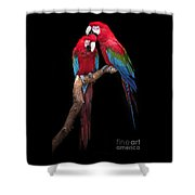 Green Winged Macaw Portrait Shower Curtain