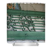 green with envy Jerusalem Shower Curtain