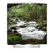 Greenbrier River Scene 2 Shower Curtain