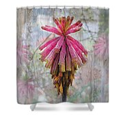 Greenhouse On A Rainy Day Shower Curtain