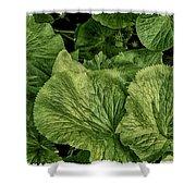 Greens Shower Curtain