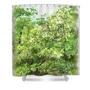 Greenstone Trail Shower Curtain