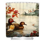 Greenwinged Teal Ducks Shower Curtain
