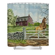 Greeting At The Gate Shower Curtain