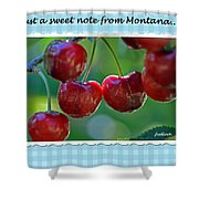 Greeting Card - Cherries #1 Shower Curtain
