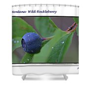 Greeting Card - Huckleberry #4 Shower Curtain