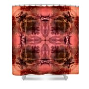 t40 Shower Curtain