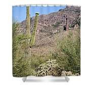 Greeting The Night Shower Curtain
