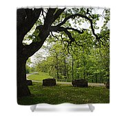 Greetng Another Spring Shower Curtain