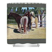Gregory And His Mares Shower Curtain by Linda Feinberg