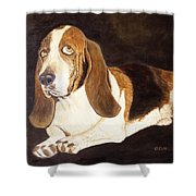 Gregory Shower Curtain