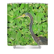 Grey Crane On Green Shower Curtain