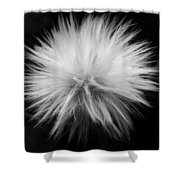 Grey Hairs Shower Curtain