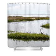 Grey Heron #1 Shower Curtain