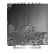Grey Heron At Morning In Bas Relief Shower Curtain