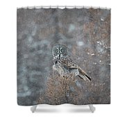 Grey In Snow Shower Curtain