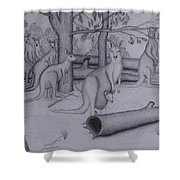 Grey Kangaroos Shower Curtain
