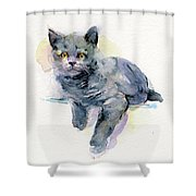 Grey Kitten Shower Curtain