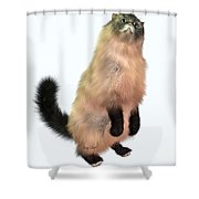 Grey Tabby Cat Shower Curtain by Corey Ford