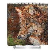 Grey Wolf Face Shower Curtain