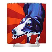 Lurcher Evie Painting By Alicia Vannoy Call