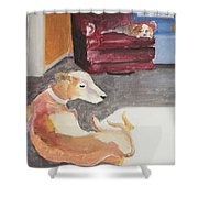 Greyhound And Spaniel Shower Curtain