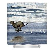 Greyhound At The Beach Shower Curtain