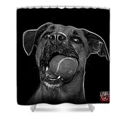 Greyscale Boxer Mix Dog Art - 8173 - Bb Shower Curtain