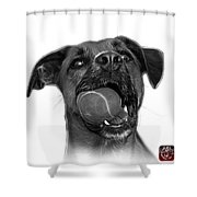 Greyscale Boxer Mix Dog Art - 8173 - Wb Shower Curtain
