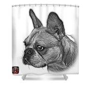 Greyscale French Bulldog Pop Art - 0755 Wb Shower Curtain