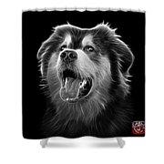 Greyscale Malamute Dog Art - 6536 - Bb Shower Curtain