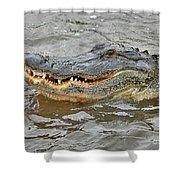 Grinning Gator Shower Curtain