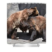Grizzlies' Playtime 4 Shower Curtain