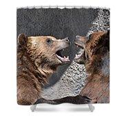 Grizzlies' Playtime 6 Shower Curtain