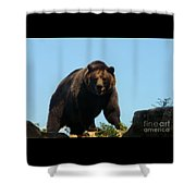Grizzly-7746 Shower Curtain