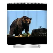 Grizzly-7747 Shower Curtain