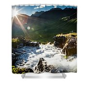 Grizzly Bear Falls Shower Curtain