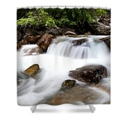 Grizzly Creek Shower Curtain by Barry C Donovan