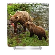 Grizzly Dinner For Two Shower Curtain