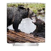Grizzly Love Shower Curtain