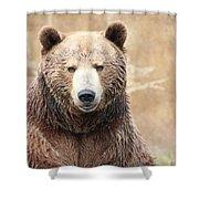 Grizzly Portrait Shower Curtain