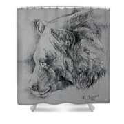 Grizzly Sketch Shower Curtain