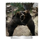 Grizzly Waltz Shower Curtain