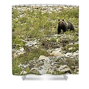 Grizzly Watching People Watching Grizzly No. 3 Shower Curtain