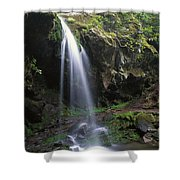 Grotto Falls In The Great Smokies Shower Curtain