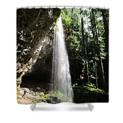 Grotto Falls Perspective Shower Curtain
