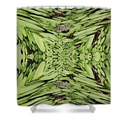 Ground Cover Vortex Shower Curtain