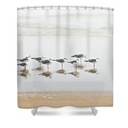Grounded By Fog Shower Curtain